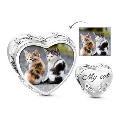 Gato se enamora de Peces